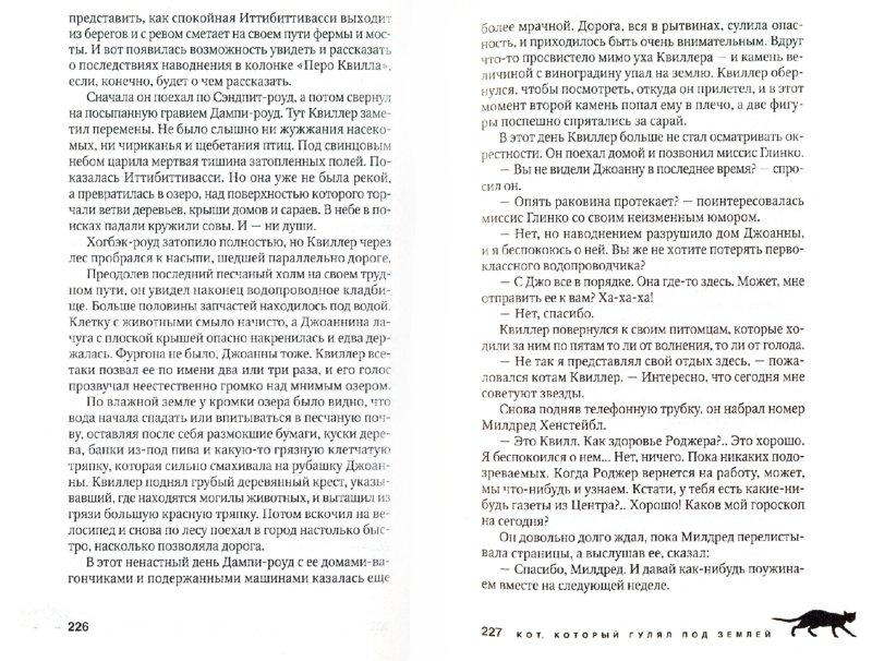 Иллюстрация 1 из 10 для Кот, который разговаривал с привидениями - Лилиан Браун | Лабиринт - книги. Источник: Лабиринт