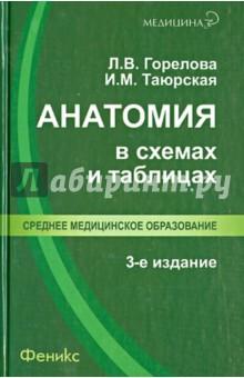 Анатомия в схемах и таблицах