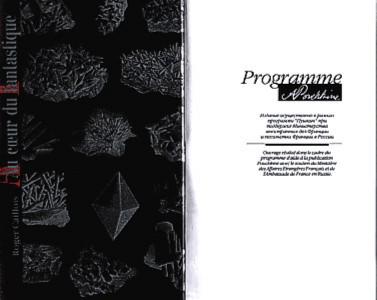 Иллюстрация 1 из 3 для В глубь фантастического. Отраженные камни - Роже Кайуа   Лабиринт - книги. Источник: Лабиринт