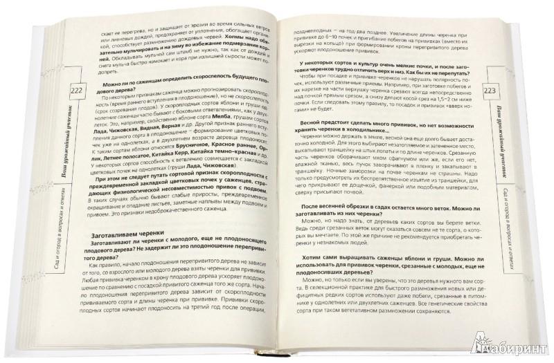 Иллюстрация 1 из 5 для Сад и огород в вопросах и ответах - Андрей Туманов   Лабиринт - книги. Источник: Лабиринт