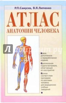 Атлас анатомии человека: Учебное пособие для студентов средних медицинских учебных заведений