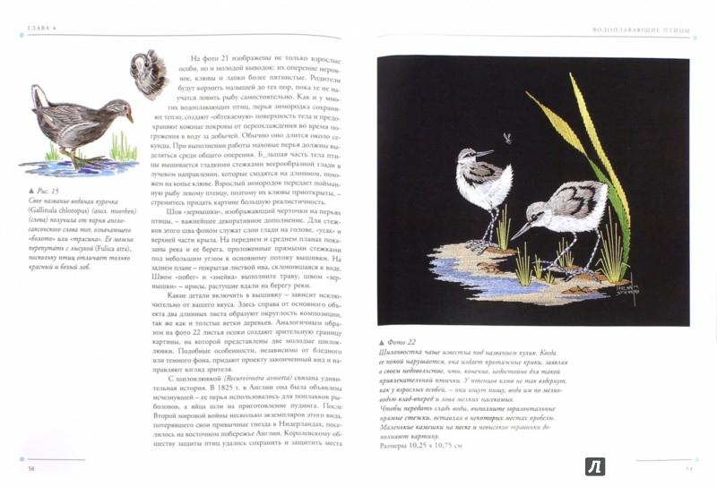 Иллюстрация 1 из 33 для Птицы. Практическое руководство - Хелен Стивенс | Лабиринт - книги. Источник: Лабиринт