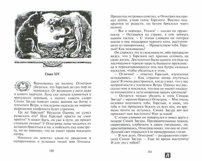Иллюстрация 1 из 20 для Опасная тропа - Эрин Хантер   Лабиринт - книги. Источник: Лабиринт