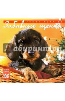 Календарь: Забавные щенки 2007 год (07120)