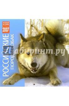 Календарь: Российские породы собак 2007 год (07212)
