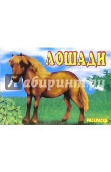 Лошади. Раскраска (М-012)