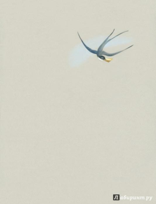 Иллюстрация 1 из 44 для Мальчик-Звезда: Сказки - Оскар Уайльд   Лабиринт - книги. Источник: Лабиринт
