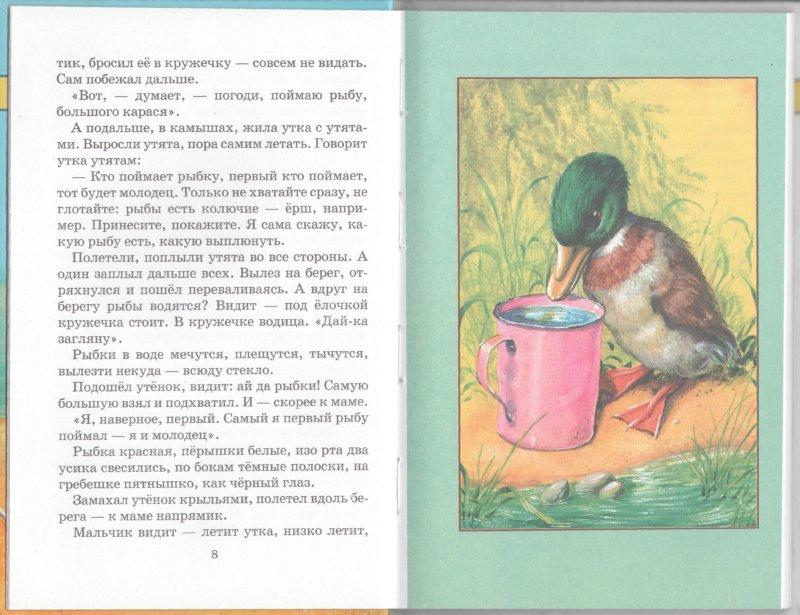 Иллюстрация 1 из 22 для Беспризорная кошка - Борис Житков | Лабиринт - книги. Источник: Лабиринт