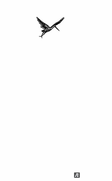 Иллюстрация 1 из 27 для Записки сиротки - Лидия Чарская   Лабиринт - книги. Источник: Лабиринт