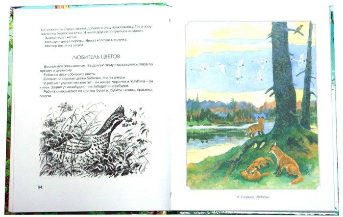 Иллюстрация 1 из 16 для 300 страниц про зверей и птиц | Лабиринт - книги. Источник: Лабиринт