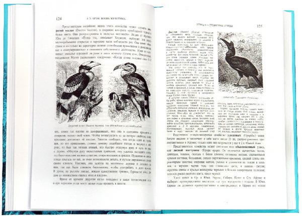 Иллюстрация 1 из 9 для Жизнь животных. В трех томах. Том 2: Птицы - Альфред Брэм | Лабиринт - книги. Источник: Лабиринт