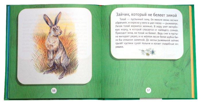 Иллюстрация 1 из 35 для Вокруг света - Александр Тихонов   Лабиринт - книги. Источник: Лабиринт