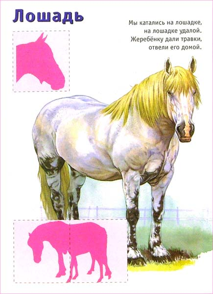 Иллюстрация 1 из 2 для Ребятам о зверятах. Утята (красная) | Лабиринт - книги. Источник: Лабиринт