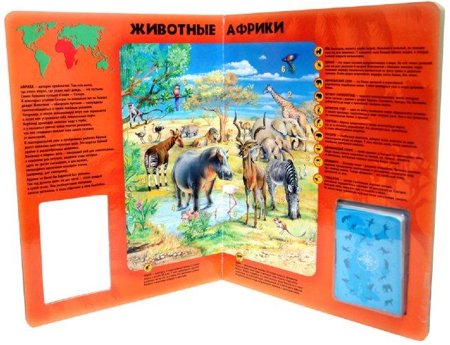 Иллюстрация 1 из 6 для Атлас. Мир животных с картами | Лабиринт - книги. Источник: Лабиринт