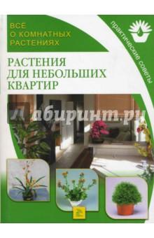 Растения для небольших квартир