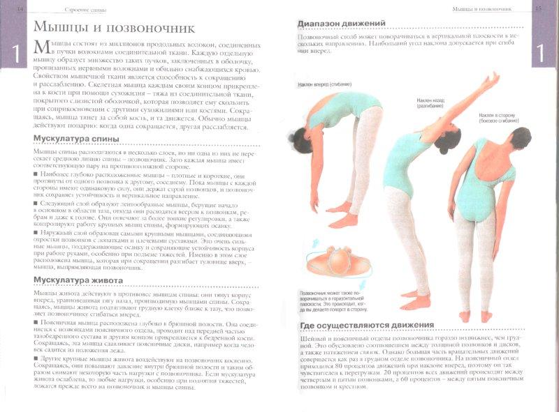Тейпирование при остеохондрозе грудного отдела позвоночника