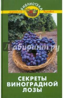 Секреты виноградной лозы
