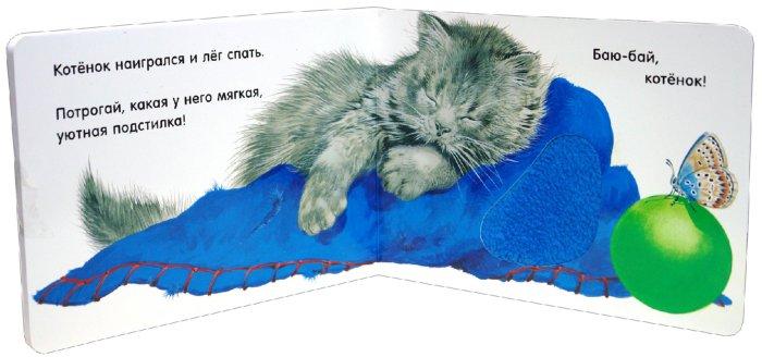 Иллюстрация 1 из 4 для Погладь пушистых малышей! Котята | Лабиринт - книги. Источник: Лабиринт