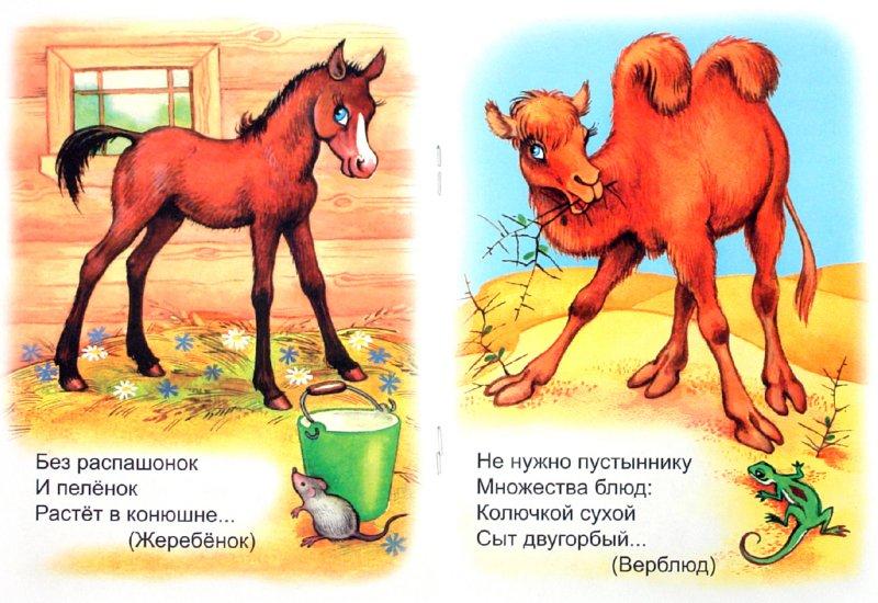 Иллюстрация 1 из 13 для В Ледовитом океане - Владимир Кремнев | Лабиринт - книги. Источник: Лабиринт