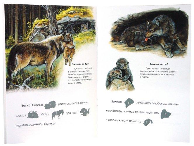 Иллюстрация 1 из 23 для Я учусь читать с наклейками. Волчонок Задира   Лабиринт - книги. Источник: Лабиринт
