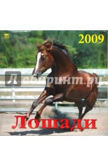 Календарь 2009 Лошади (70803)