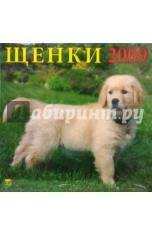 Календарь 2009 Щенки (70806)