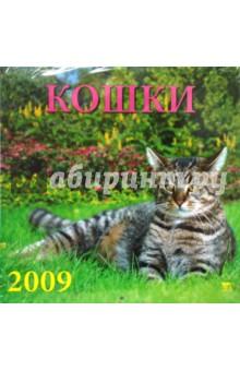 Календарь 2009 Кошки (70821)