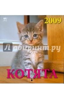 Календарь 2009 Котята (30805)