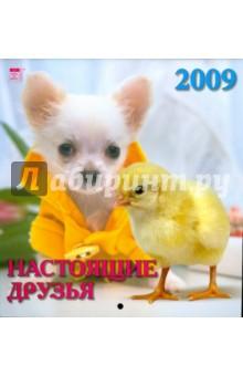 Календарь 2009 Настоящие друзья (30809)