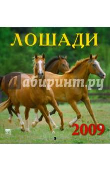 Календарь 2009 Лошади (30811)