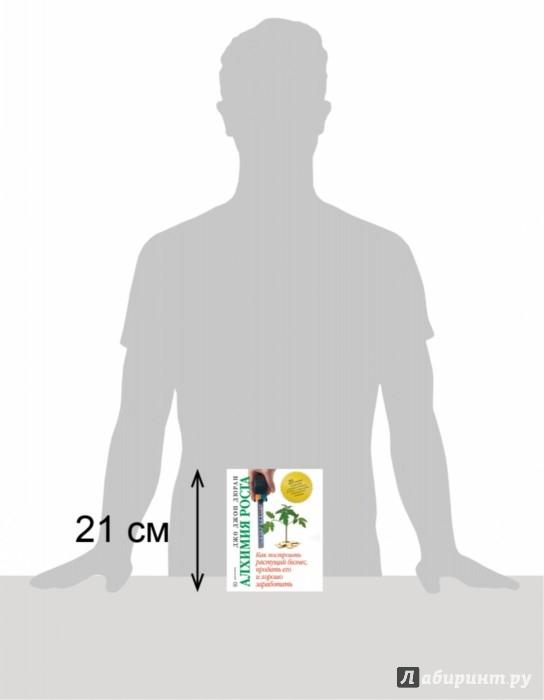 Иллюстрация 1 из 16 для Алхимия роста. Как построить растущий бизнес - Джон Дюран | Лабиринт - книги. Источник: Лабиринт