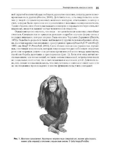 Иллюстрация 1 из 5 для Психология юмора - Род Мартин | Лабиринт - книги. Источник: Лабиринт