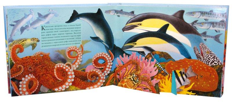 Иллюстрация 1 из 22 для Океан - Вуд, Дэвис | Лабиринт - книги. Источник: Лабиринт