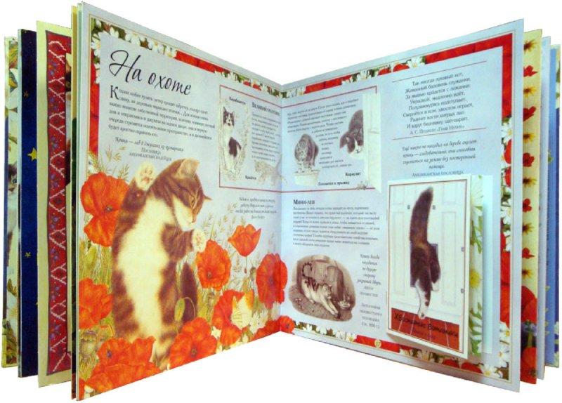 Иллюстрация 1 из 38 для Кошки. И ничего, кроме кошек. Самая правильная книга | Лабиринт - книги. Источник: Лабиринт