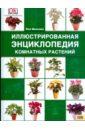 Иллюстрированная энциклопедия комнатных растений