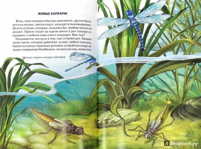 Иллюстрация 1 из 16 для Хищники - Юлия Дунаева   Лабиринт - книги. Источник: Лабиринт
