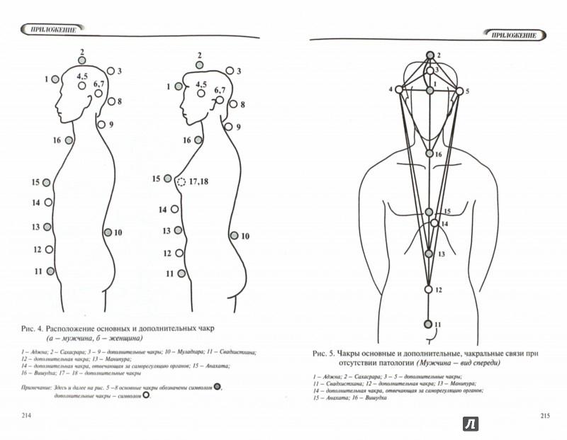 Иллюстрация 1 из 5 для Биолокация для всех. Система самодиагностики и самоисцеления человека - Людмила Пучко | Лабиринт - книги. Источник: Лабиринт