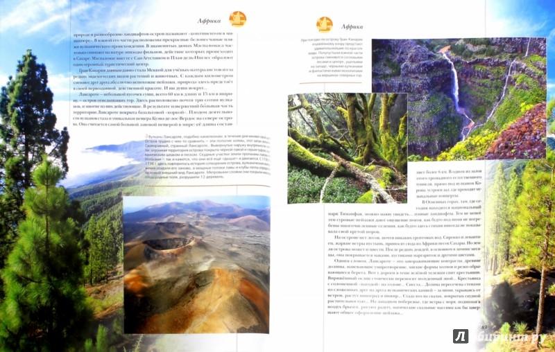 Иллюстрация 1 из 39 для Острова мира | Лабиринт - книги. Источник: Лабиринт