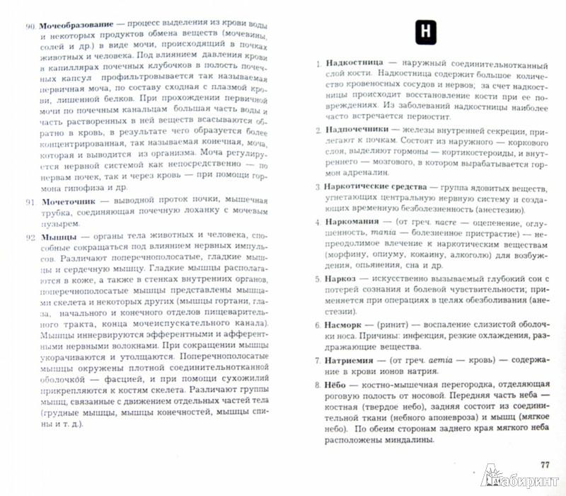 Иллюстрация 1 из 12 для Словарь медицинских и общемедицинских терминов - Швырев, Муранова | Лабиринт - книги. Источник: Лабиринт