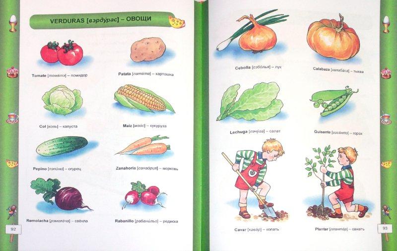 Иллюстрация 1 из 25 для Испанский для самых маленьких | Лабиринт - книги. Источник: Лабиринт