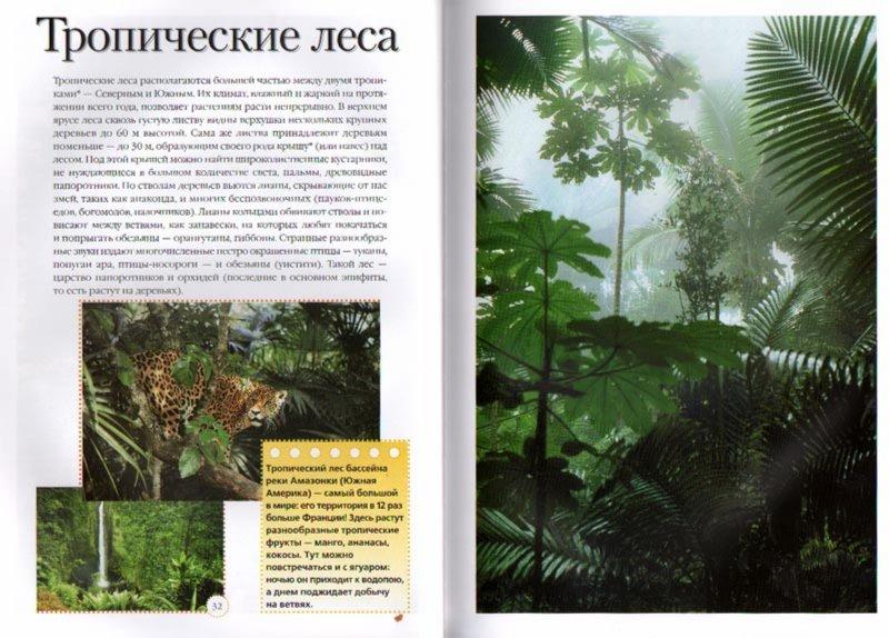 Иллюстрация 1 из 13 для Энциклопедия природы - Бекер Де | Лабиринт - книги. Источник: Лабиринт