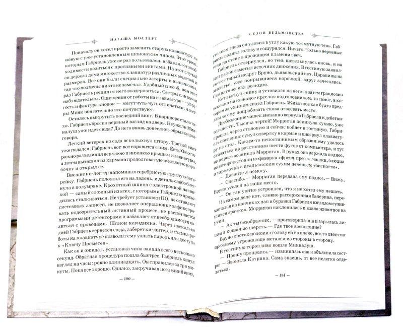 Иллюстрация 1 из 15 для Сезон ведьмовства - Наташа Мостерт | Лабиринт - книги. Источник: Лабиринт