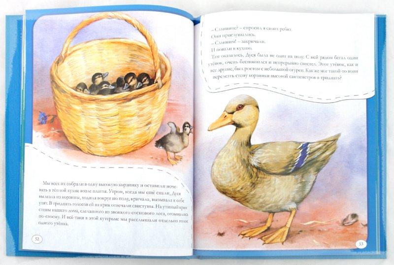 Иллюстрация 1 из 24 для Рассказы о животных малышам - Михаил Пришвин | Лабиринт - книги. Источник: Лабиринт
