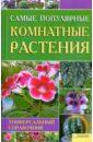 Цветкова Мария Всеволодовна Самые популярные комнатные растения