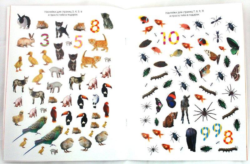 Иллюстрация 1 из 14 для Обведи, наклей, узнай (с фломастером). Животные | Лабиринт - книги. Источник: Лабиринт