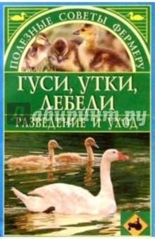 Гуси, утки, лебеди