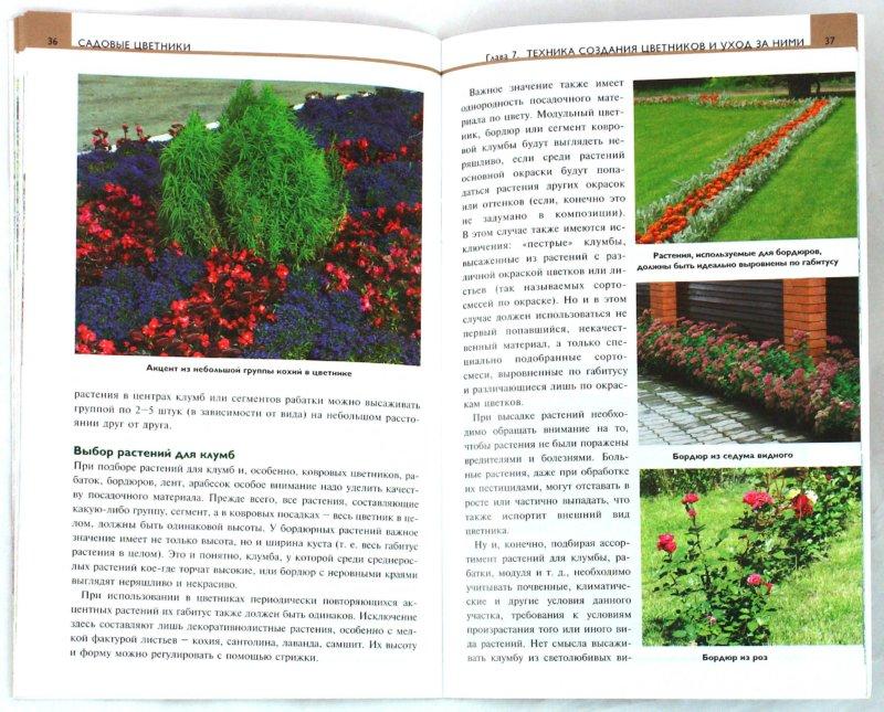 Иллюстрация 1 из 20 для Садовые цветники - Елена Колесникова | Лабиринт - книги. Источник: Лабиринт