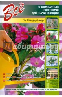 Все о комнатных растениях для начинающих