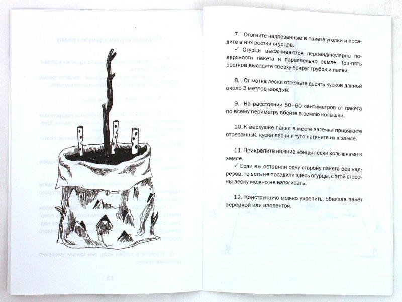 Иллюстрация 1 из 19 для Как вырастить 1000 огурцов на 1 кв. метре - Вадим Мещеряков | Лабиринт - книги. Источник: Лабиринт
