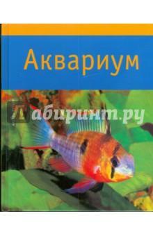 АквариумАквариум. Террариум<br>Ваша детская мечта - чудесный аквариум с веселыми, яркими рыбками - теперь легко осуществима, ведь вы держите в руках красочно оформленное, авторитетное руководство к действию: книгу Акселя Гутьяра Аквариум. Однако эта книга может заинтересовать не только начинающих, но и тех, кто давно занимается аквариумными рыбками. На ее страницах вы найдете практические советы эксперта-аквариумиста по самым разным вопросам - от технического и декоративного обустройства домашнего аквариума до необходимых знаний о водных растениях, об особенностях различных видов рыб и их содержании, о методах устранения технических неполадок оборудования аквариума, о болезнях и способах лечения его обитателей. Книга легко читается, и практически каждая ее страница содержит интересную и полезную информацию. Данная книга содержит большое количество красочных иллюстраций и практических советов, а также освещает все основные вопросы по уходу за аквариумом и его обитателями. Все, что необходимо знать каждому аквариумисту, вы найдете в этом практичном пособии.<br>